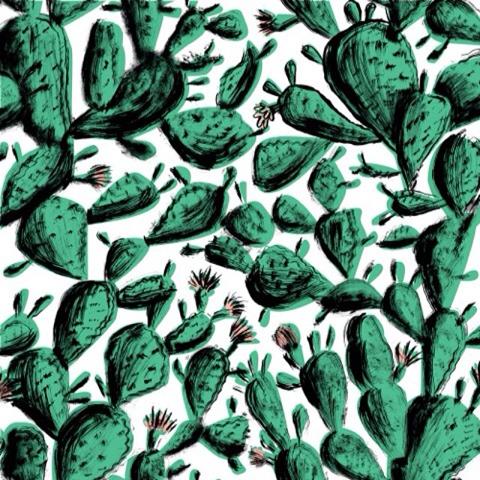 Llew Mejia prickly pear design (from instagram)
