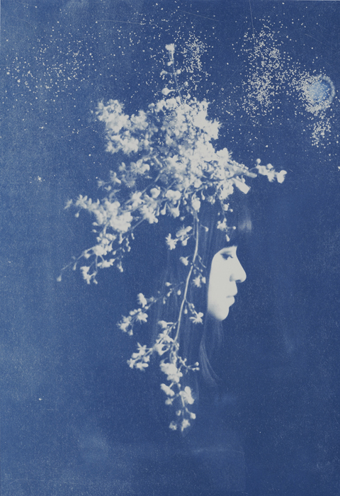 Rosie Emerson Capella edition 1 of 5 by Rosie Emerson, Cyanotype, 42 x 61 cm