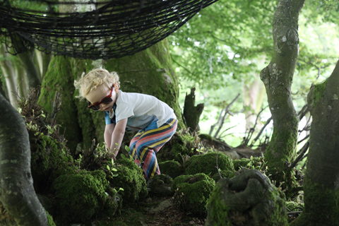 Green Earth Awakening 2014 woods