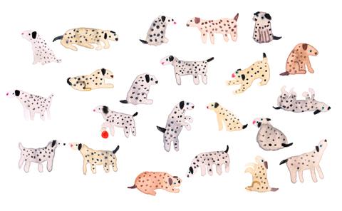 Dalmatians_Lorna_Scobie