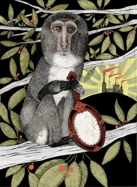 Monkey by Sara Netherway