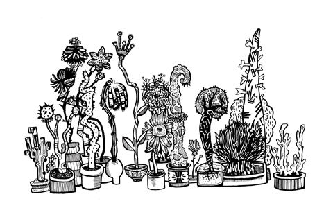LIBBY PARRA plants