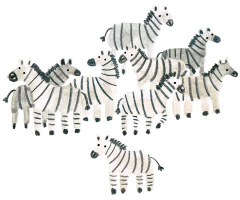 Lorna_Scobie_zebras