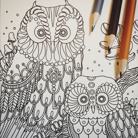 Dagdrömmar by Hanna Karlzon owls