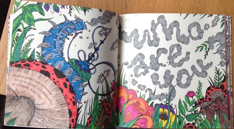 Escape to Wonderland by Paula Bowerman 2