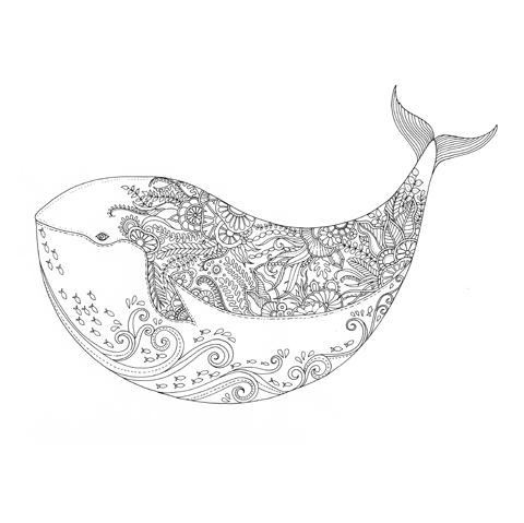 Johanna Basford Lost Ocean whale