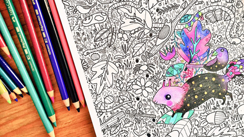 Sophie Corrigan by Sua Agape Adult Colouring Book