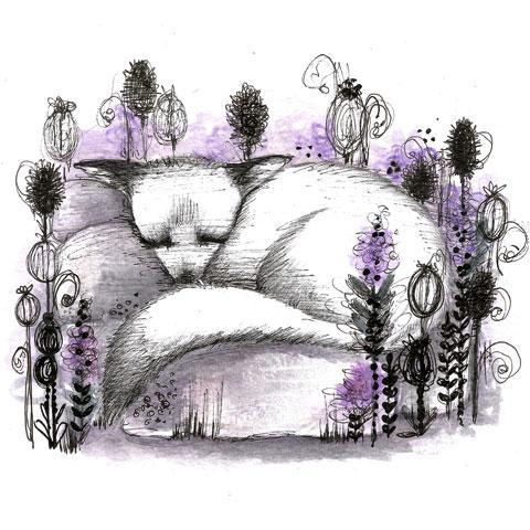 Lavender-Fox-Jo-Taylor
