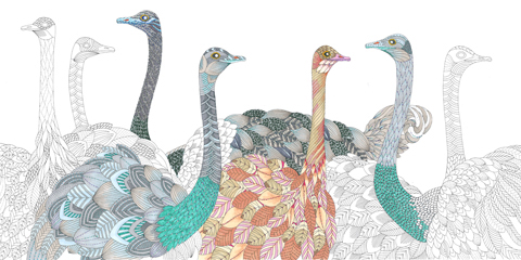 Ostriches by Susan Summers Wild Savannah by Millie Marotta