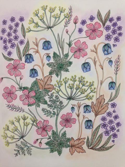 Blomster Mandala Shirley Fraser 2