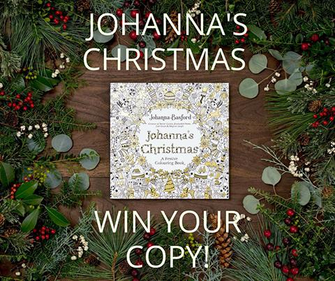 johannas-christmas-giveaway-for-blog